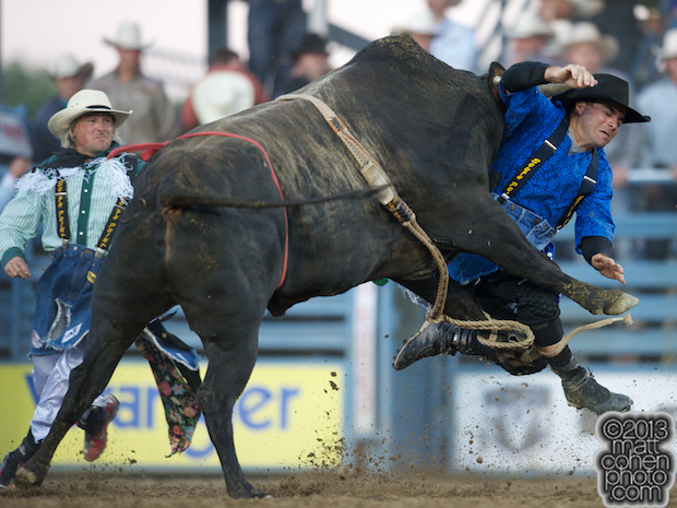 Bullfighter Tim O'Connor of Springville, CA takes a shot from Wildly Legit