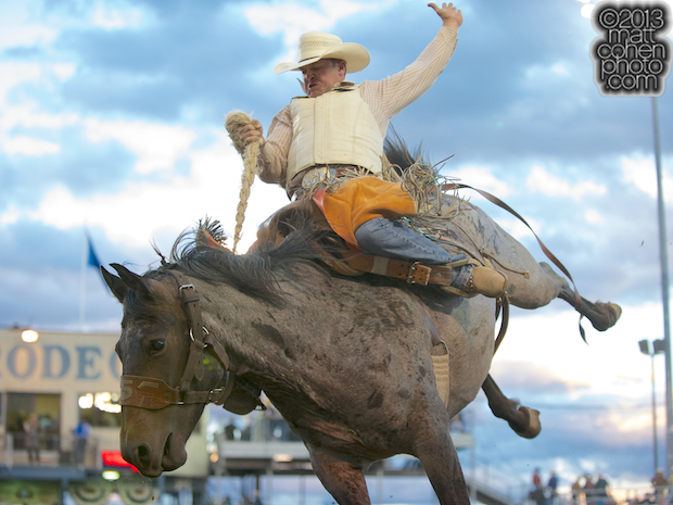 Saddle bronc rider Chase Bennett of Santaquin, UT rides Sky High at the Reno Rodeo in Reno, NV.