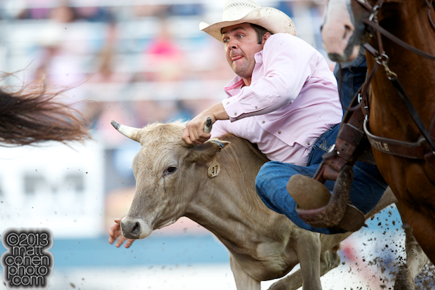 Steer wrestler Bray Armes of Ponder, TX competes at the Reno Rodeo in Reno, NV.