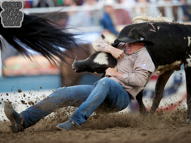 Steer wrestler Jake Rinehart of Highmore, SD competes at the Reno Rodeo in Reno, NV.