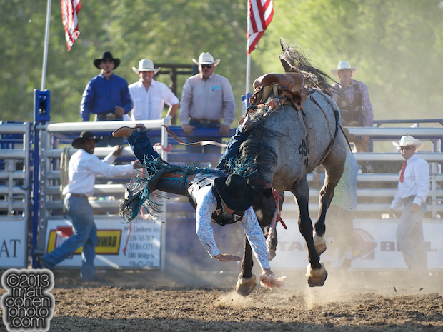 Saddle bronc rider Greg Lewis of Atascadero, CA gets bucked off 710 at the Marysville Stampede in Marysville, CA.