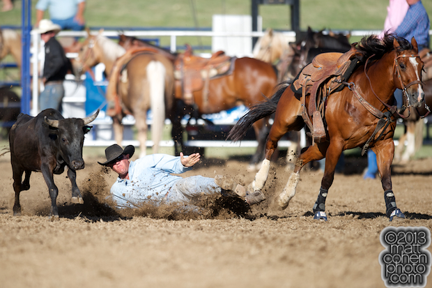 Steer wrestler Billy Holland Jr of Oroville, CA competes at the Marysville Stampede in Marysville, CA.