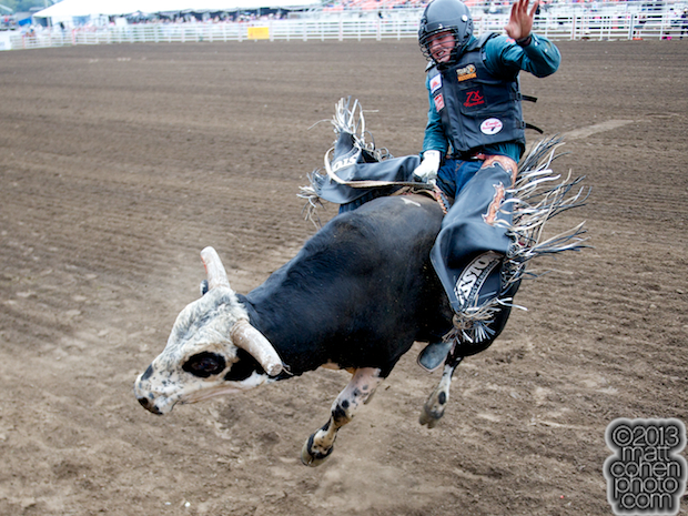 Bull rider Cody Teel of Kountze, TX rides Nobody's Business at the California Rodeo in Salinas, CA.