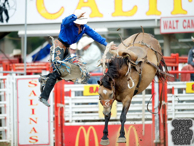 Saddle bronc rider Shane Proctor of Grand Coulee, WA gets bucked off Buckskin Belle at the California Rodeo in Salinas, CA.