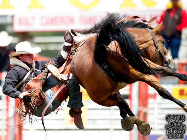 Bareback rider Cody Higgins of Red Bluff, CA gets bucked off Pucker Up at the California Rodeo in Salinas, CA.