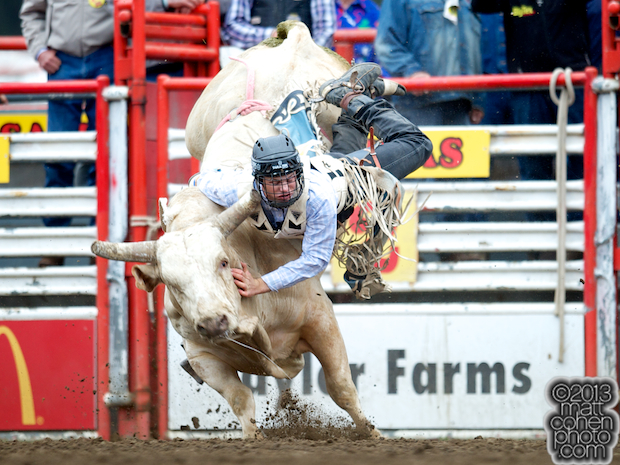 Bull rider Joe Frost of Randlett, UT gets bucked off Gold Rush at the California Rodeo in Salinas, CA.