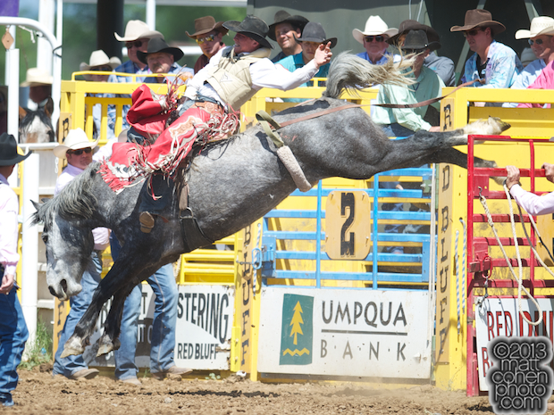 2013 NFR Bareback Stock - 9 Moons of Sankey Pro Rodeo