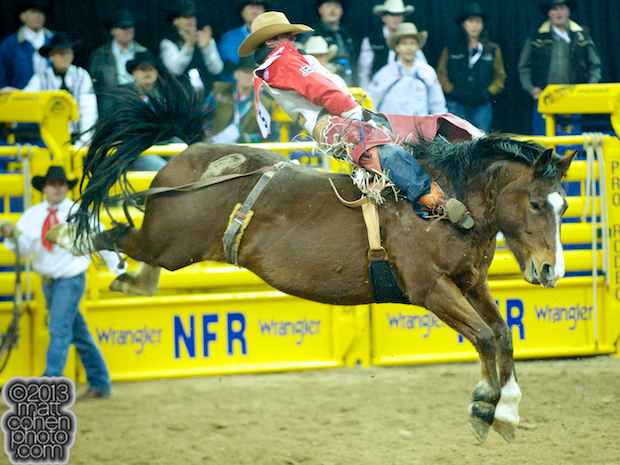 2013 NFR Bareback Stock - Molly of JK Rodeo Company
