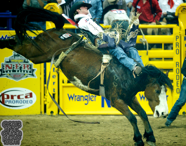 2013 NFR Bareback Stock - Dirty Rags of J Bar J Inc.