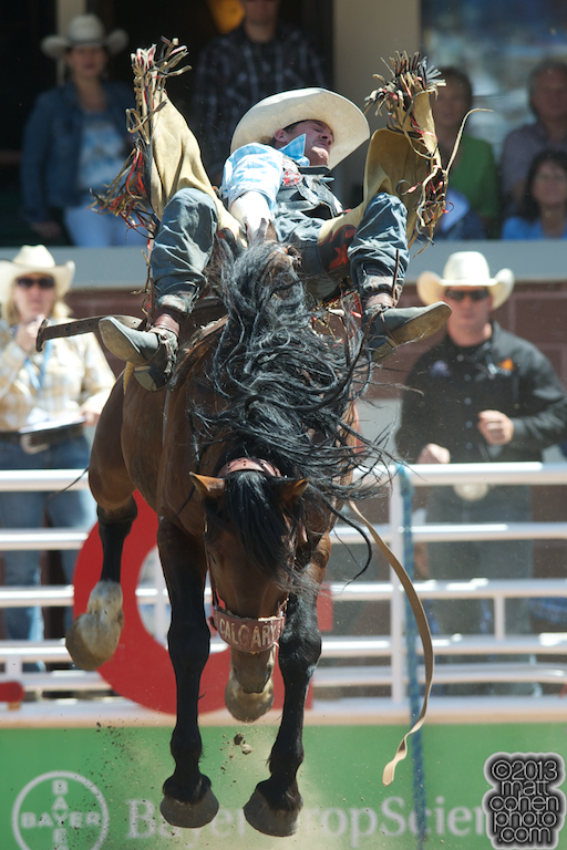 2013 NFR Bareback Stock - Shadow Warrior of Calgary Stampede