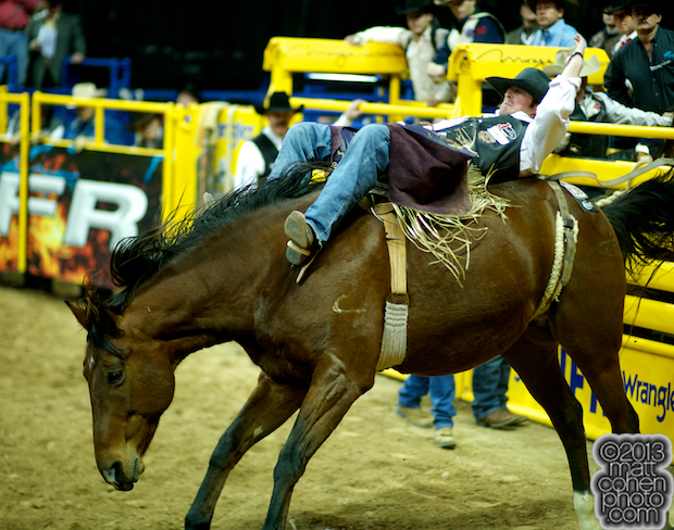 2013 NFR Bareback Stock - Fancy Free of Classic Pro Rodeo