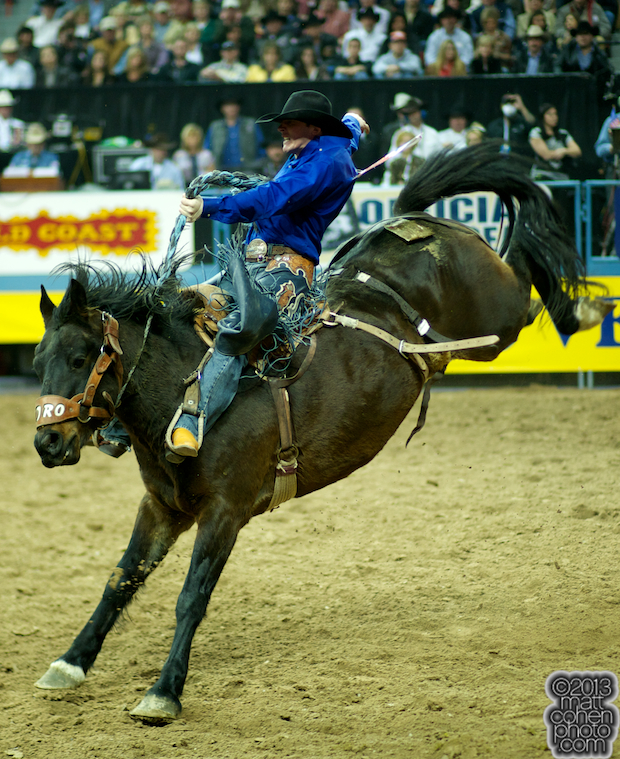 2013 NFR Saddle Bronc Stock - Pedro of Wayne Vold Rodeo Co.