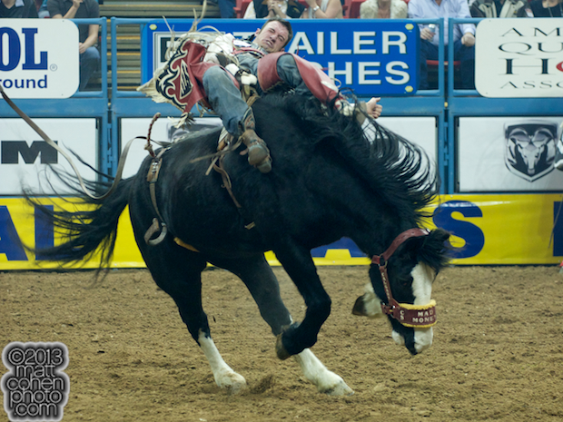 2013 NFR Saddle Bronc Stock - Mad Money of Calgary Stampede