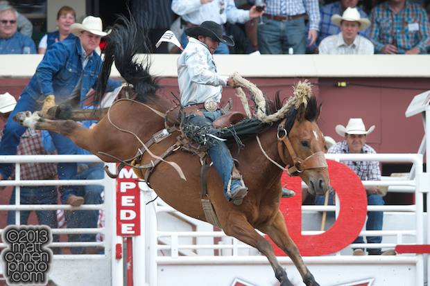 2013 NFR Saddle Bronc Stock - Get Smart of Harvey Northcott Rodeo