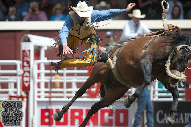 2013 NFR Saddle Bronc Stock - Stars Alive of Kesler Championship Rodeo