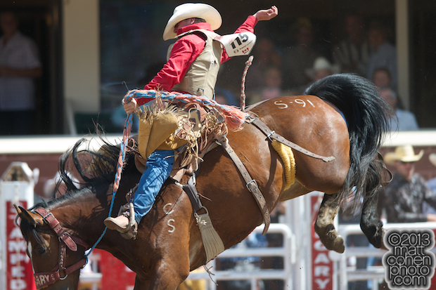 2013 NFR Saddle Bronc Stock - Shoshone Mountain of Calgary Stampede