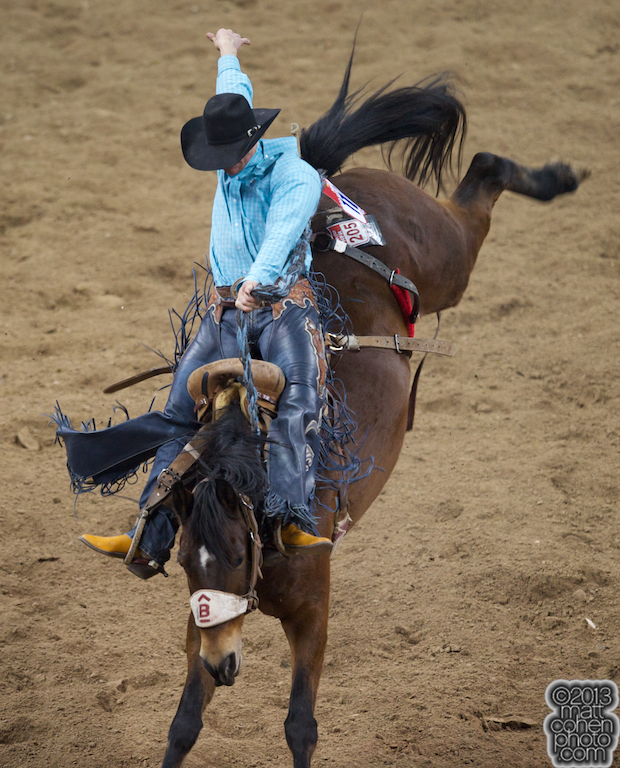 2013 NFR Saddle Bronc Stock - Cat Power of Barnes Rodeo
