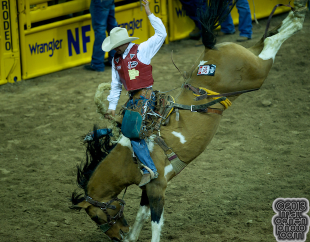 2013 NFR Saddle Bronc Stock - Fraid Knot of Korkow Rodeos