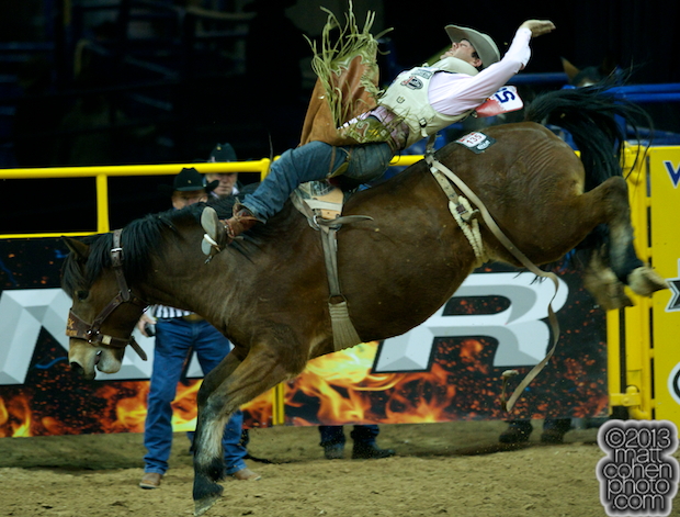2013 NFR Saddle Bronc Stock - Big Tex of Classic Pro Rodeo