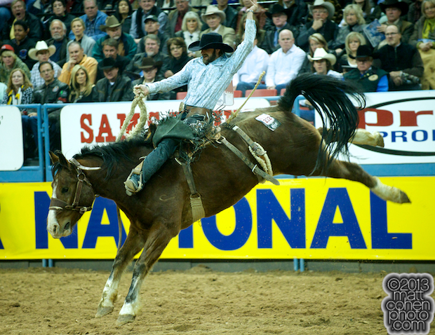2013 NFR Saddle Bronc Stock - Gold Coast of Classic Pro Rodeo