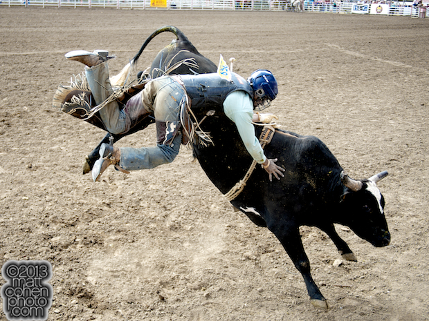 2013 NFR Bull Riding Stock - Wicked of Rafter G Rodeo