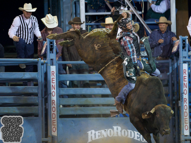 2013 NFR Bull Riding Stock - Major Impact of Flying Diamond Rodeo