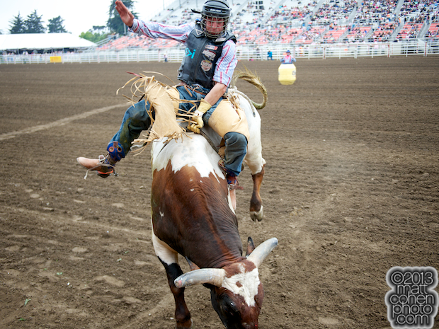 2013 NFR Bull Riding Stock - King of Hearts of Corey & Lange Rodeo