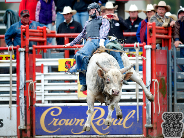 2013 NFR Bull Riding Stock - Glass Tiger of Four Star Rodeo