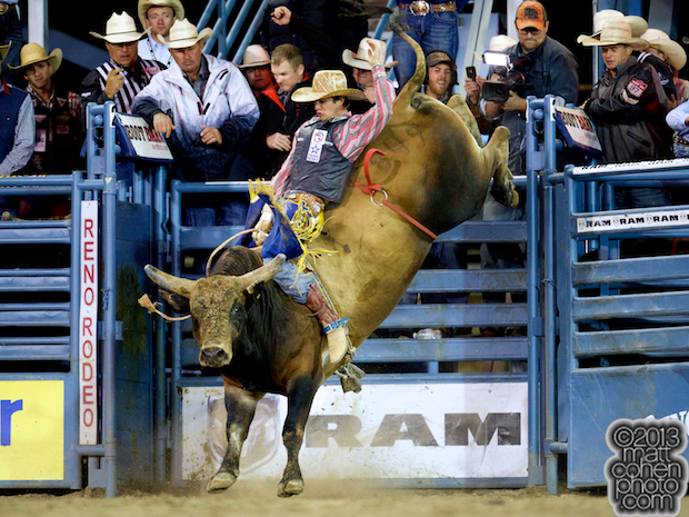 2013 NFR Bull Riding Stock - Crystal Deal of Growney Bros Rodeo