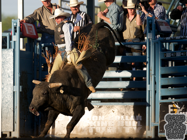 2013 NFR Bull Riding Stock - Canadian Tuxedo of Growney Bros Rodeo