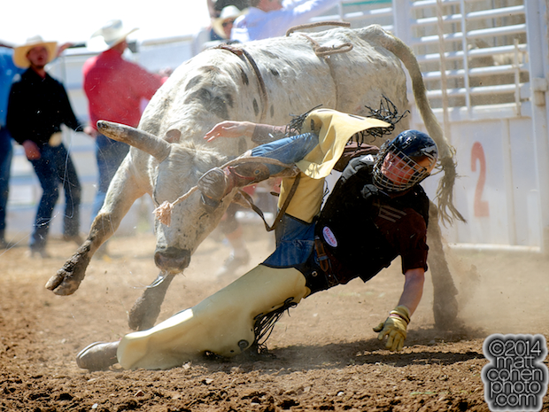 Bull rider Travis Trizinsky of Reno, NV competes at the La Grange Rodeo in La Grange, CA.