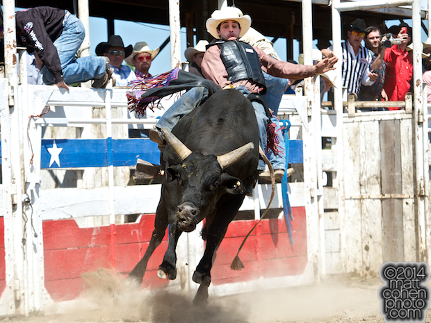 Bull rider Elliott Jacoby of Fredricksburgh, TX rides Ned Kelly at the Oakdale Rodeo in Oakdale, CA.
