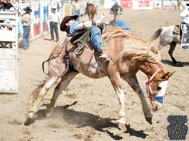 Bareback rider Joel Schlegel of Burns, CO rides Dream With Me at the Oakdale Rodeo in Oakdale, CA.