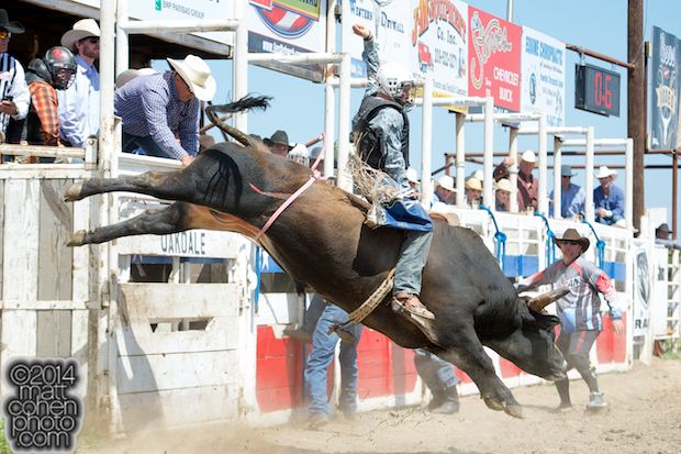 Bull rider Brady Williams of Snelling, CA rides MJ Kat at the Oakdale Rodeo in Oakdale, CA.