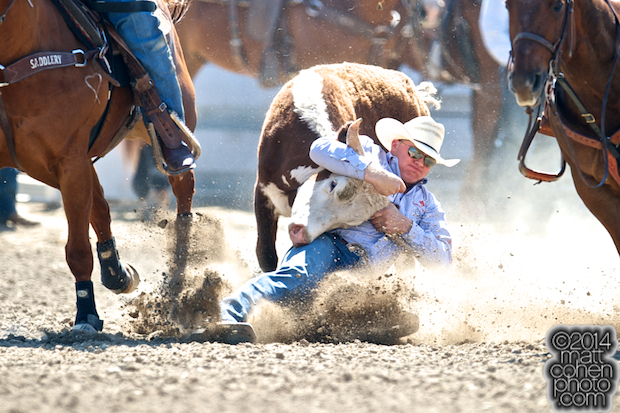 Steer wrestler Dakota Eldridge of Elko, NV competes at the Oakdale Rodeo in Oakdale, CA.