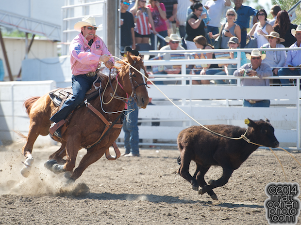 Tie-down roper Tyson Durfey of Colbert, WA competes at the Oakdale Rodeo in Oakdale, CA.
