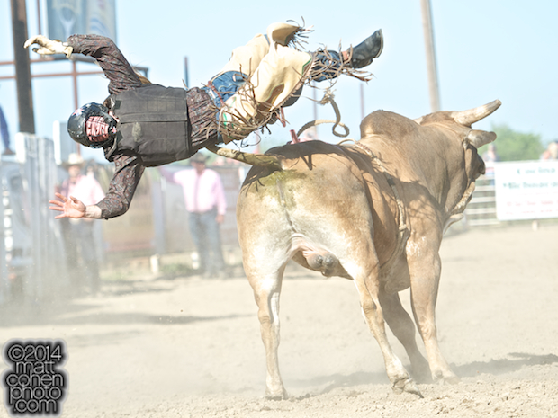 Bull rider Will Morris of Reno, NV gets bucked off MJ Dos Mas at the Oakdale Rodeo in Oakdale, CA.