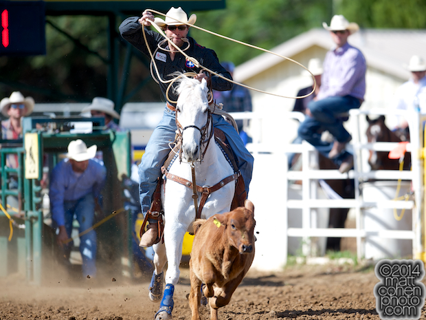 Tie-down roper Adam Gray of Seymour, TX competes at the Red Bluff Round-Up at the Tehama District Fairgrounds in Red Bluff, CA.