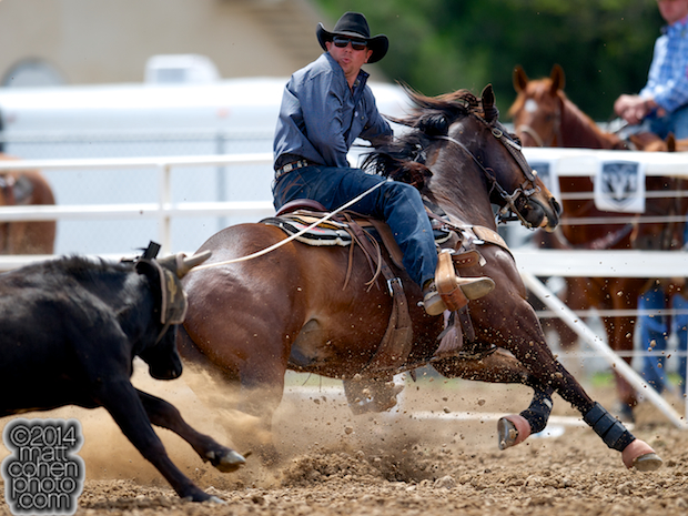 Team roper Spencer Mitchell of Colusa, CA competes at the Red Bluff Round-Up at the Tehama District Fairgrounds in Red Bluff, CA.