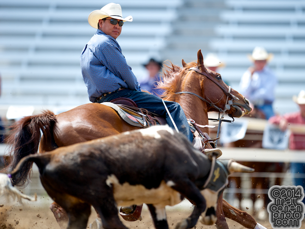 Team roper Brooks Dahozy of Window Rock, AZ competes at the Red Bluff Round-Up at the Tehama District Fairgrounds in Red Bluff, CA.