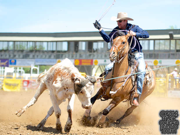 Team roper Kory Koontz of Sudan, TX competes at the Red Bluff Round-Up at the Tehama District Fairgrounds in Red Bluff, CA.