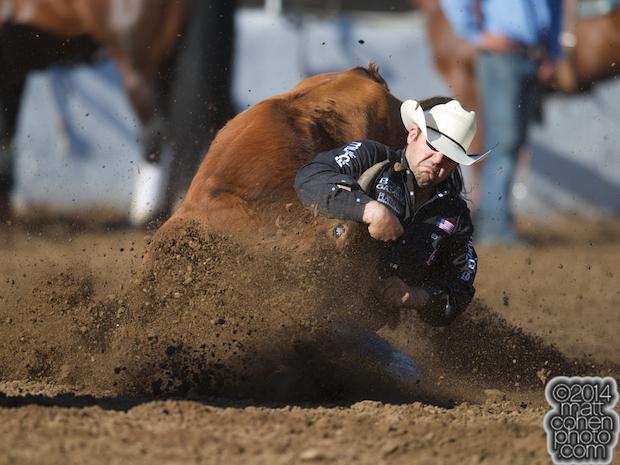 Steer wrestler Luke Branquinho of Los Alamos, CA competes at the Clovis Rodeo in Clovis, CA.