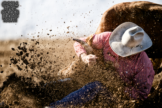 Steer wrestler Seth Brockman of Wheatland, WY competes at the Clovis Rodeo in Clovis, CA.