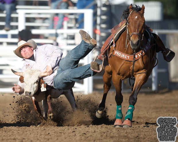 Steer wrestler Wyatt Smith of Rexburg, ID competes at the Clovis Rodeo in Clovis, CA.