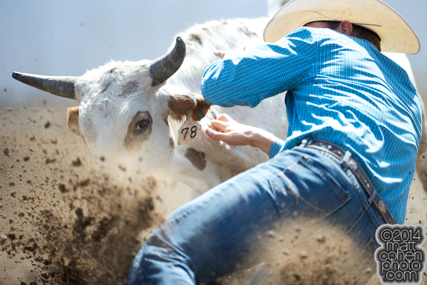 Steer wrestler Sean Santucci of Prineville, OR competes at the Clovis Rodeo in Clovis, CA.