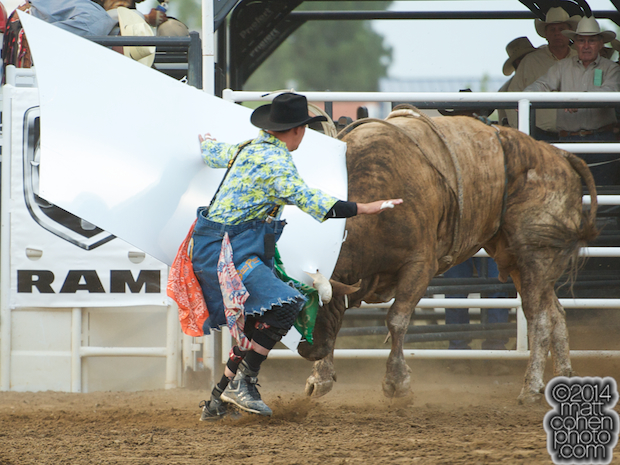 Harlem Shuffle, with a sign stuck on his horn, chases bullfighter Eric Layton of Red Bluff, CA at the PBR Touring Pro event at the Clovis Rodeo in Clovis, CA.