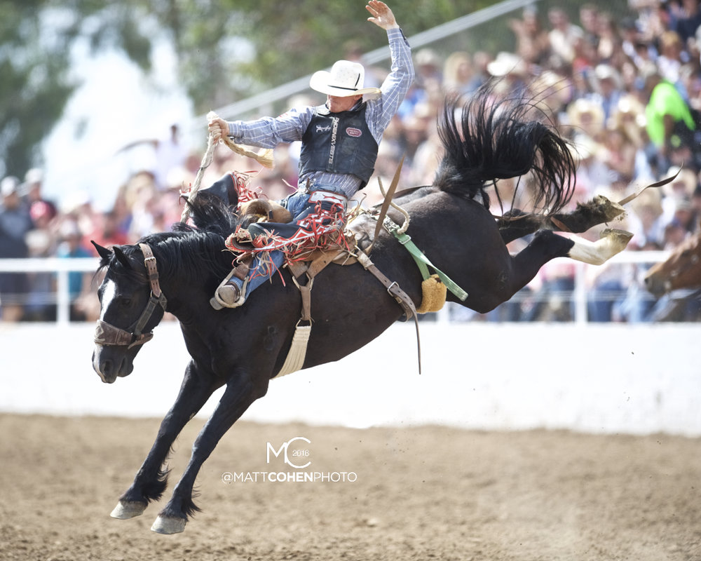 2016 WNFR: Wrangler National Finals Rodeo Qualifiers: Saddle Bronc #1 Jacobs Crawley