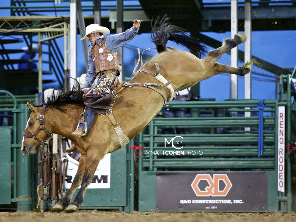 2016 WNFR: Wrangler National Finals Rodeo Qualifiers: Saddle Bronc #8 Clay Elliott