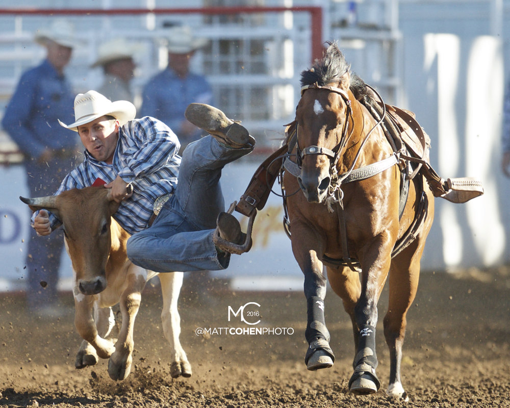 2016 WNFR: Wrangler National Finals Rodeo Qualifiers: Steer Wrestling #13 Riley Duvall
