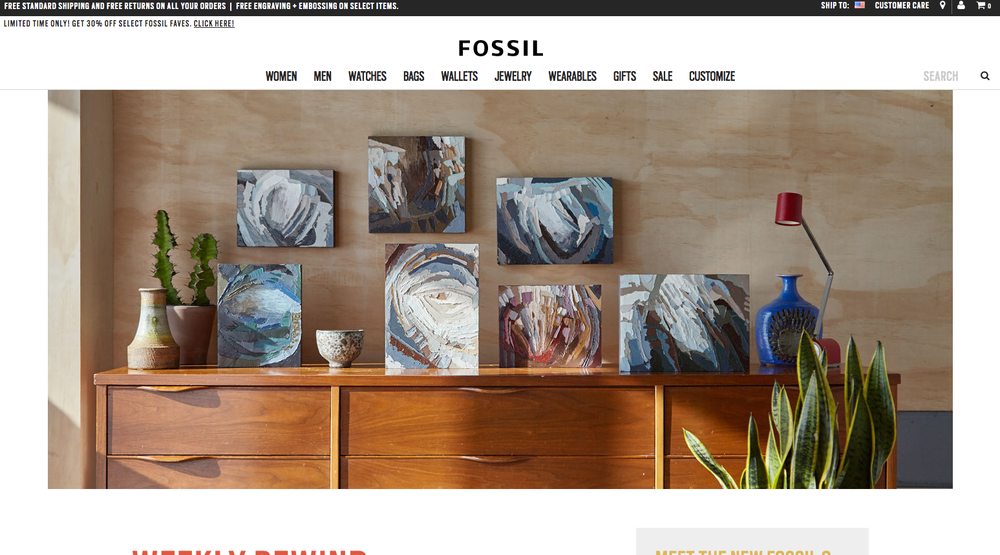 Kate Mullin Fossil Collaboration
